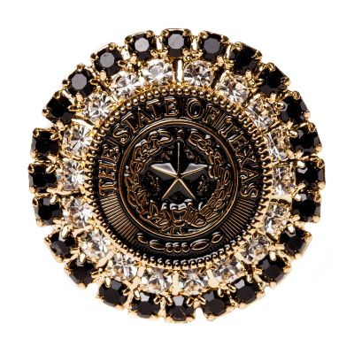 Texas State Seal Bronze and Black Brooch