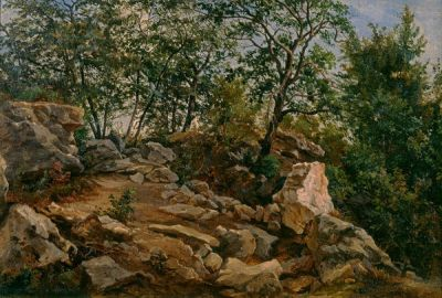 Hermann Lungkwitz On a Rocky Texas Hillside, c. 1880
