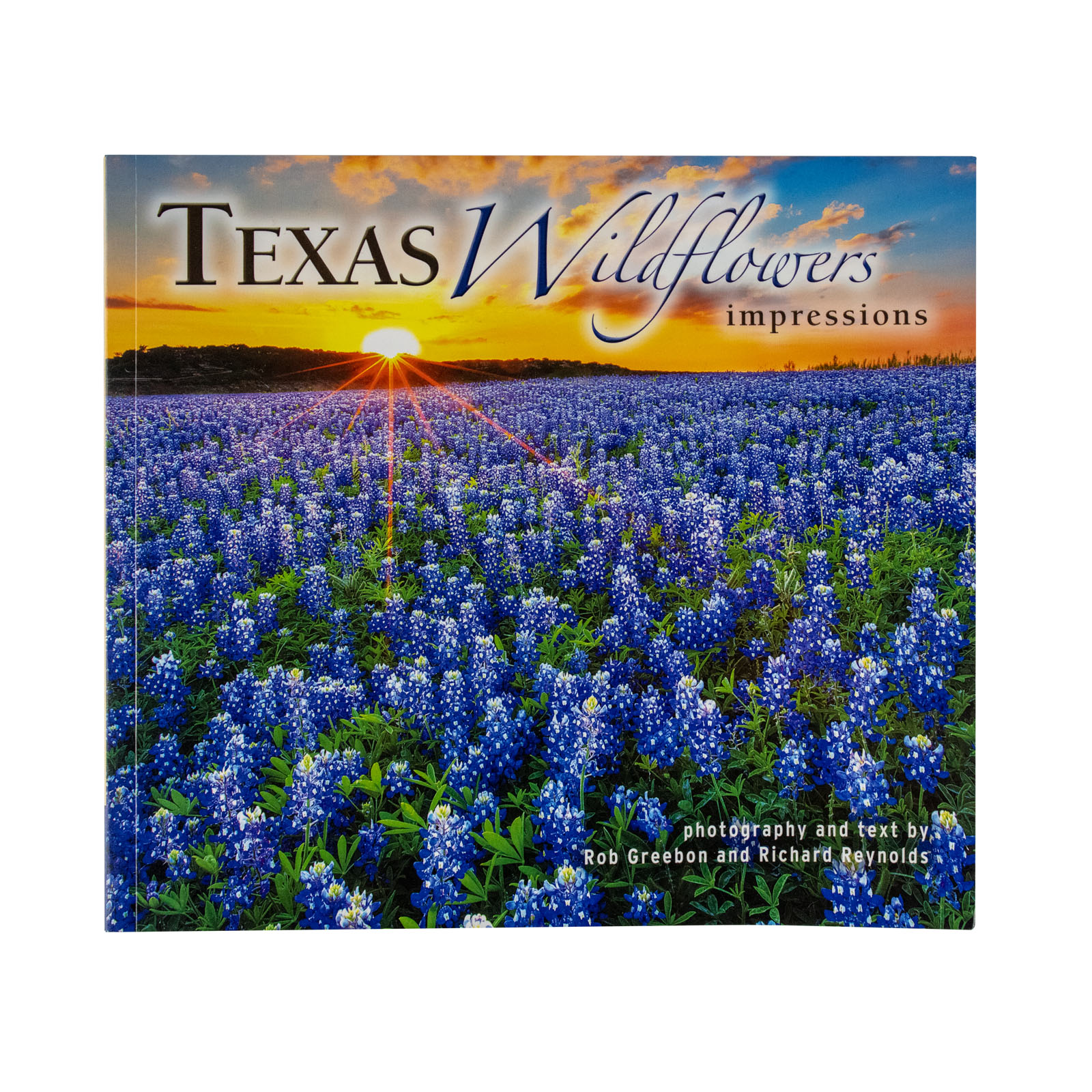 Texas Wildflower Impressions
